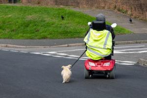 כללי בטיחות בנסיעה על קלנועית